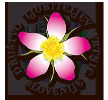 Logo DLVS
