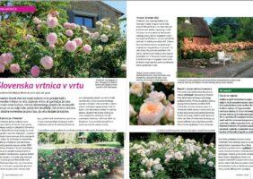 Članek o slovenskih vrtnicah v reviji Gaia